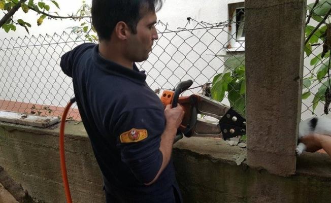 İtfaiye ekipleri sıkışan kediyi kurtardı
