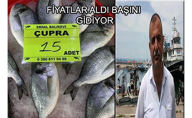Balıkta fiyat pahalılığı sürüyor