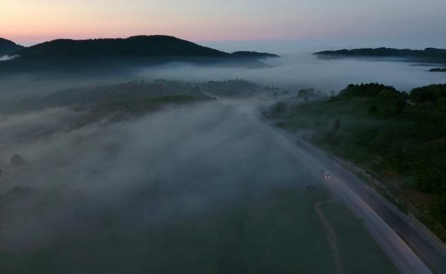 Batı Karadeniz'de sis