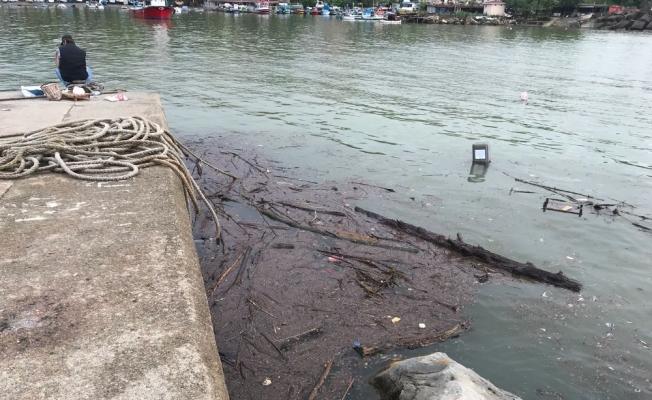 Yağmurla birlikte balıkçı barınağında kirlilik oluştu