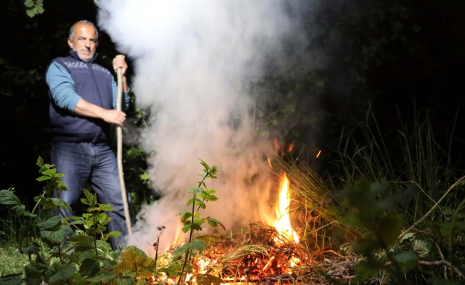 Fındıkta don tehlikesine 'dumanlı' koruma