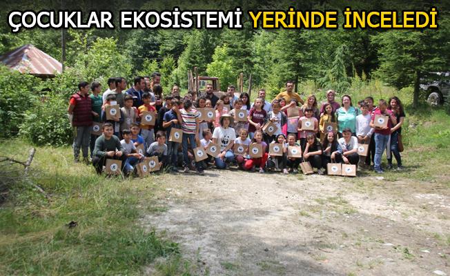 'IHLAMUR VADİSİ' HAYATA GEÇTİ
