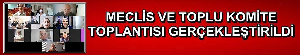 MECLİS VE TOPLU KOMİTE TOPLANTISI GERÇEKLEŞTİRİLDİ